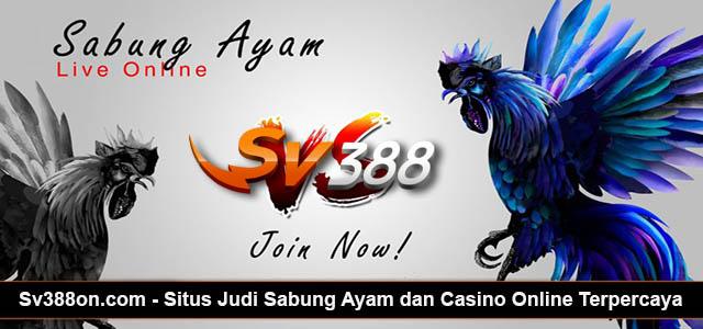Daftar SV388